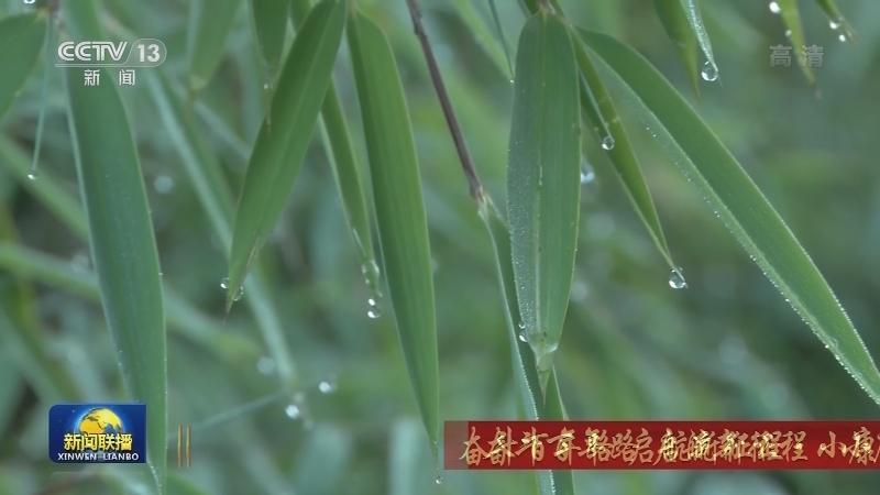 【奋斗百年路 启航新征程·小康梦圆】绿色发展 铺就全面小康社会最美底色
