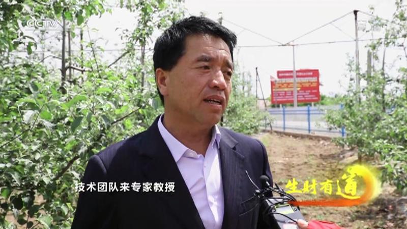 《生财有道》 20210715 夏日经济系列——甘肃庆阳:瓜菜正当时 苹果卖四季