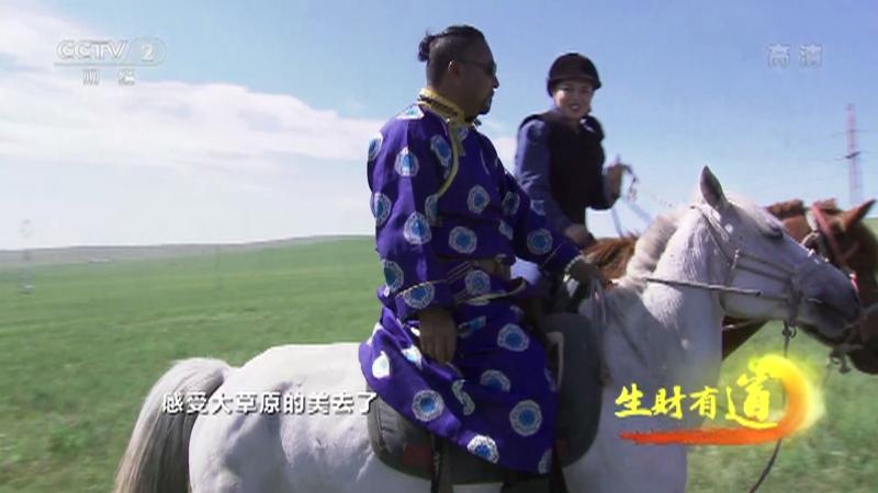 《生财有道》 20210802 生态中国草原行——酣畅草原体验 美味额尔古纳
