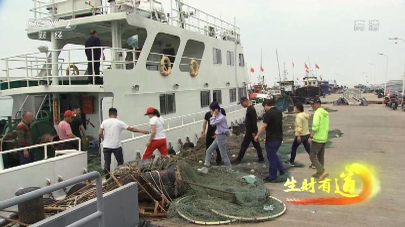 《生财有道》 20210906 生态中国沿海行——浙江洞头:生态的海 生财的海