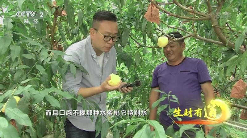 《生财有道》 20210915 乡村振兴中国行——西藏察隅:山中有好物 携手小康路