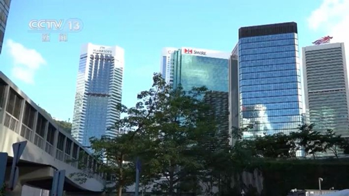 [视频]国际人士支持香港因疫情推迟立法会选举