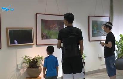 特区新闻广场 2019.08.09 - 厦门电视台 00:23:11