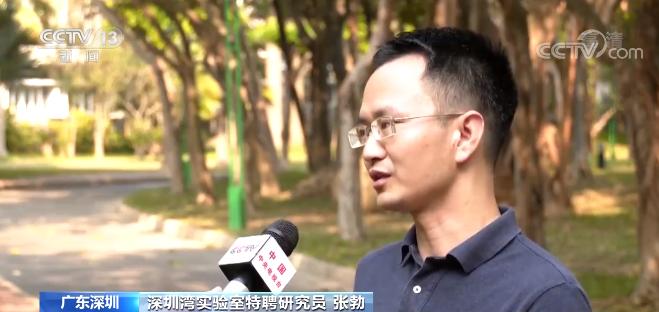 """【奋斗百年路 启航新征程】深圳:""""先行示范区""""开启新征程"""
