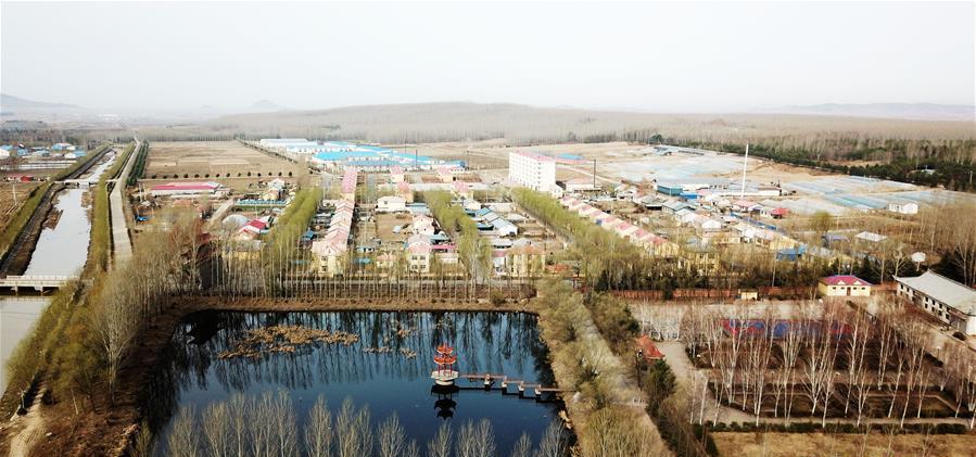 被生态林环抱的元宝村
