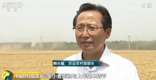 夏粮首战告捷!农业农村部部长:这有利于稳物价
