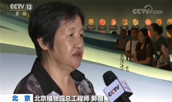 北京植物园总工程师郭翎