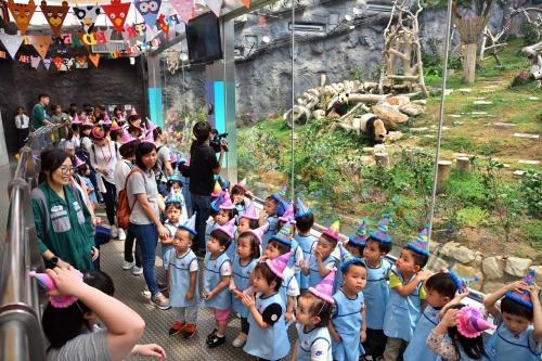 """同为3岁的小朋友为大熊猫""""健健""""和""""康康""""送上生日祝福。图片来源:澳门特区政府网站"""