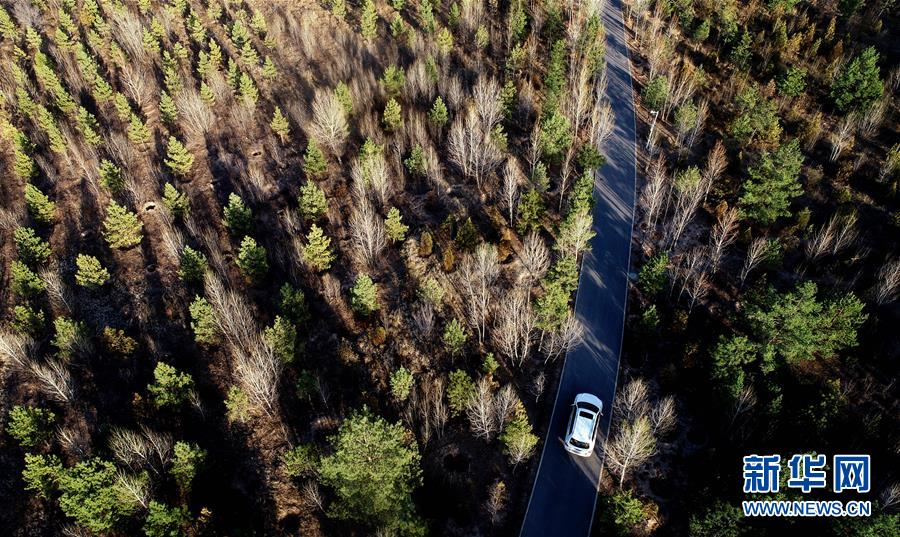 4月4日无人机拍摄的陕西省榆林市靖边县五台森林公园。 新华社记者 刘潇 摄