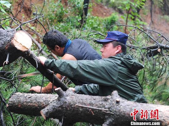 凶亮俊丛林救火员正正在停止浑障功课 刘栋 摄