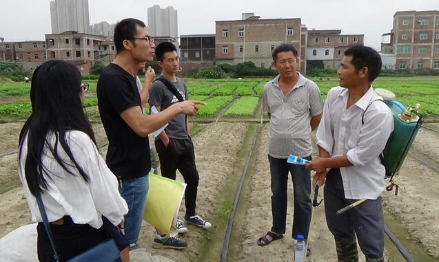 晋江对农民合作社、家庭农场、种养大户等新型农业经营主体购买使用农药情况适时跟踪(牛效礼 摄)
