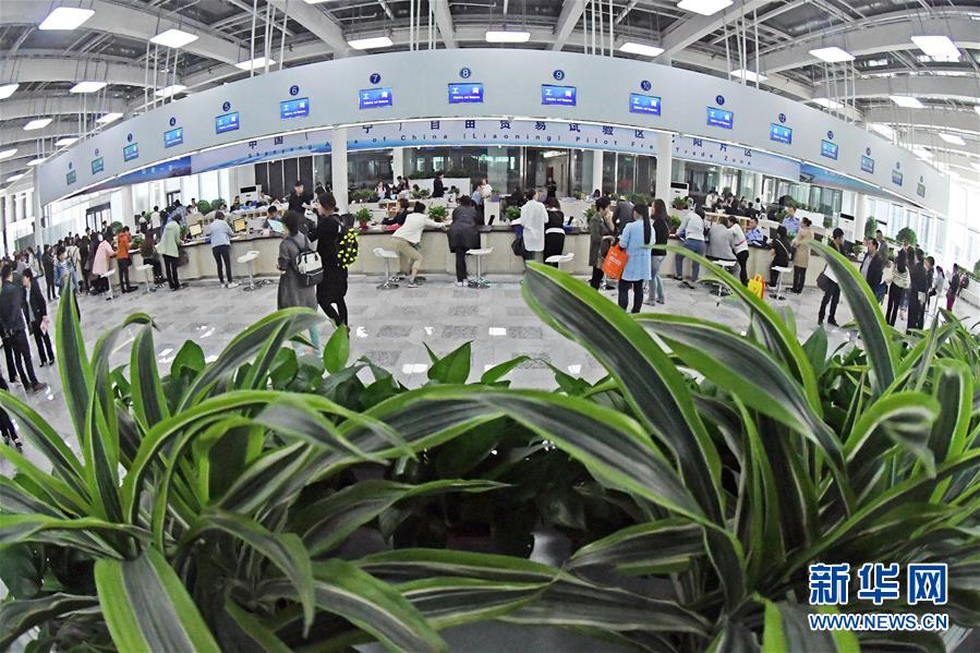 众多企业代表在辽宁自贸区沈阳片区政务服务中心咨询注册(2017年5月9日摄)。 新华社记者 杨青 摄