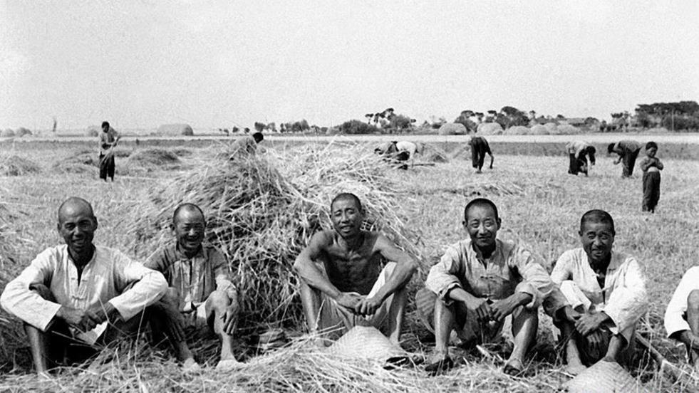 △安徽省霍邱县在治理淮河第一期工程完成后,小麦获得丰收。这是当地农民在麦田里休息(资料照片)