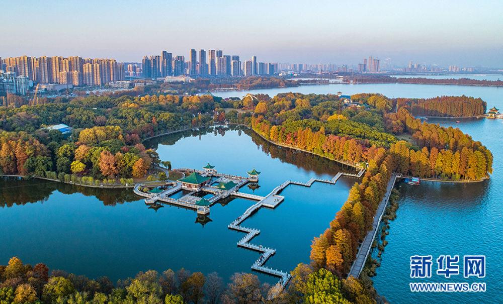 这是2019年3月3日拍摄的武汉东湖绿道(无人机拍摄)。新华社记者 肖艺九 摄