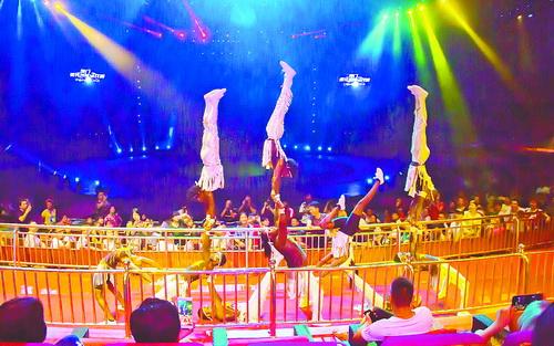 灵玲国际马戏城夜场表演人气旺。(本组图/集美旅游 提供)