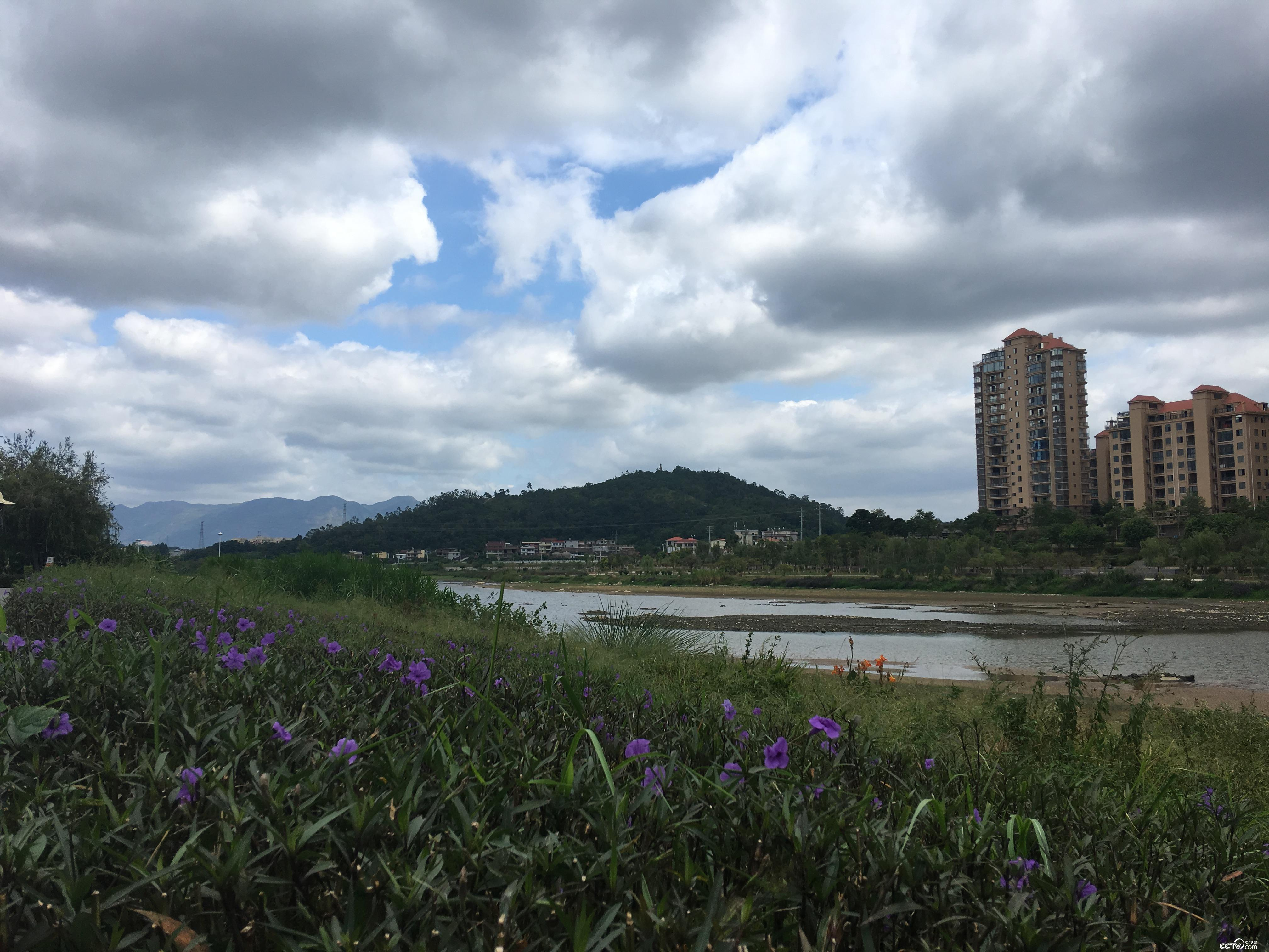 莆田人民的母亲河木兰溪两岸花红柳绿,成为休闲好去处。(摄/徐辉)