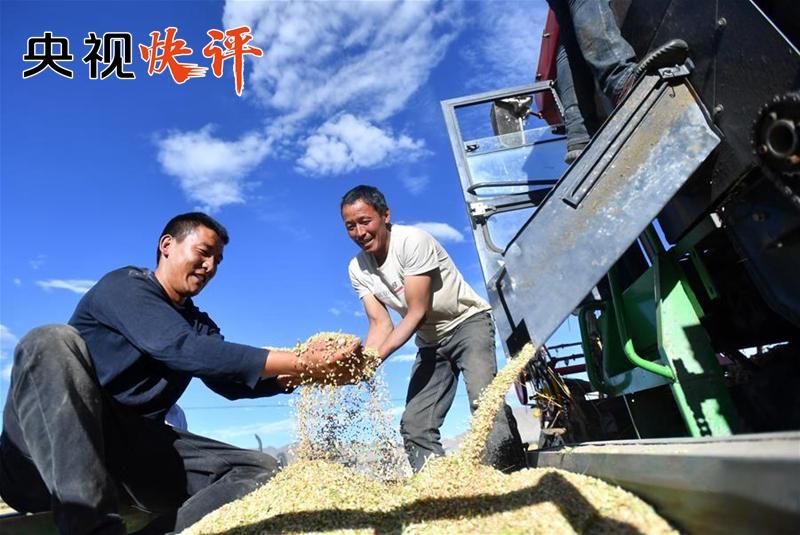 【央视快评】牢记为农服务根本宗旨