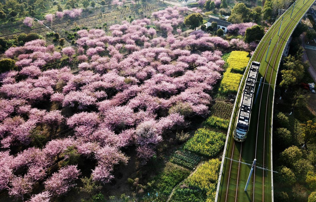 """【回望""""十三五"""":我的收获与转变】生态画笔绘就幸福中国底色"""
