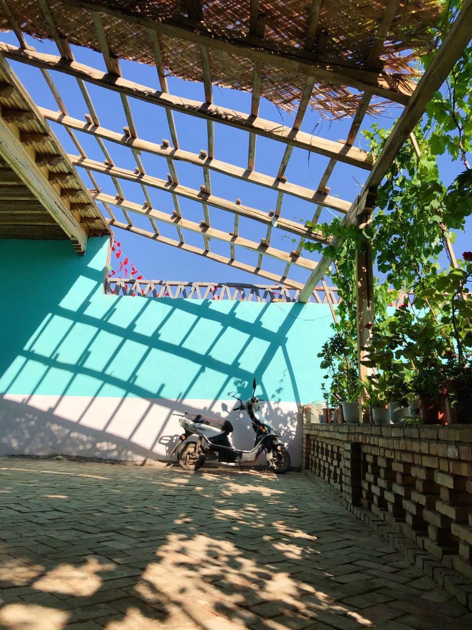 墩艾日克村一戶村民的庭院,順勢生長的葡萄藤生機勃勃。