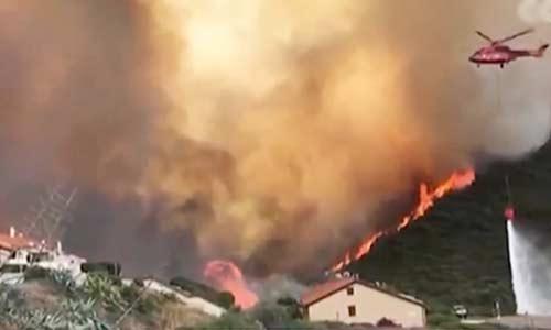 意大利撒丁岛:2万公顷植被遭焚毁 大量动物死亡